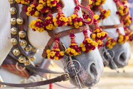 Horses adorned with flowers in the Santa Barbara Old Spanish Days Parade